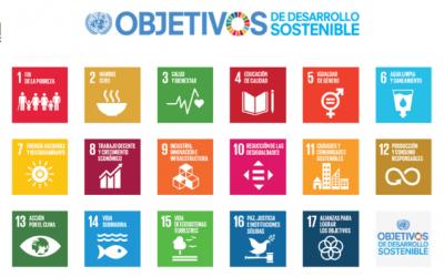 ¿Cómo cumple nuestra empresa los Objetivos del Milenio de la ONU?